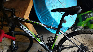 Great in winter! Perfect condition Giant Roam 2 hybrid bike
