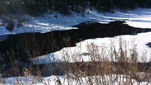 Wanted off grid acreage around Western entrance to Kenora