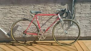Fiori Roma Bicycle for Sale
