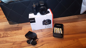 SONY DSC H300 CYBERSHOT WITH ENERGIZER BATTERY AND CHARGER !!!