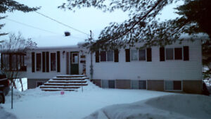 Large Winter Family Cottage (in Cayamant, QC) (Sleeps 17 People)