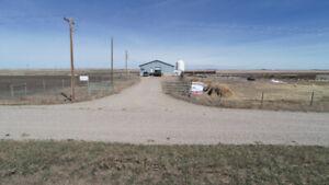 Southern Alberta Grass, Sheep & Poultry Farm