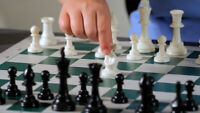 Chess player wanted