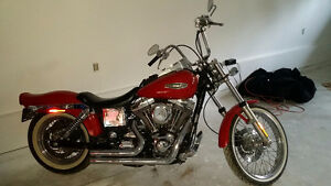 Harley Wide Glide / Dyna low miles