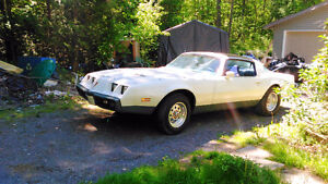 1979 Formula Firebird(reduced if before the 20th)