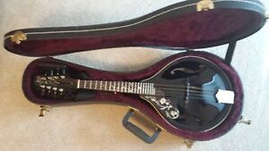 Left handed custom mandolin
