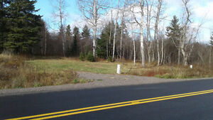 4 to 50 ACRES , Building LOT and WOODLOT