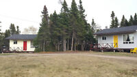 BOOK YOUR CABIN IN PORT BLANDFORD / TERRA NOVA
