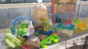 Everything for hamster/mouse