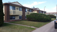 2 side by side 4-plex for sale in Medicine Hat