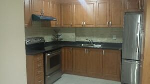 New 2 Bedroom Basement Apartment with parking