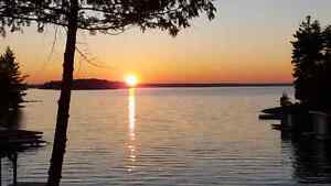 WANTED - Haliburton Forest Leased site