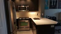 Fully Furnished 1 Bedroom Condo in Trendy Liberty Village