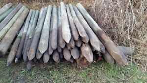 Fence posts - treated