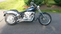 Harley Davidson Softail Standard - Mint Condition
