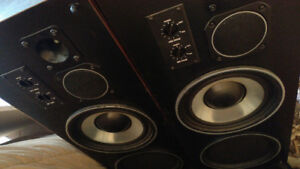 TOWER SPEAKERS GREAT FOR OUTSIDE HUGE ROOM SOCIAL EVENTS ETC.