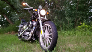 2002 Harley-Davidson XL883H