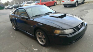 Sell/Trade 2002 Ford Mustang GT Coupe (2 door)