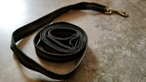 2 lead ropes