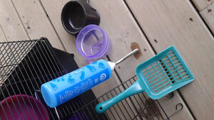 Rodent cage with toys Kitchener / Waterloo Kitchener Area image 3