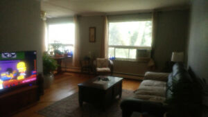 Roommate needed to Share Lg Bright 2 Bdrm Apt All Incl $700.
