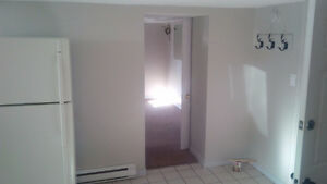 Spacious must see downtown Kitchener basement apartment! Kitchener / Waterloo Kitchener Area image 5