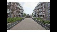 Fully Furnished 2 Bed, 2 Bath Condo in Westmount
