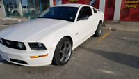 Wanna go for a ride in 06 GT Tuned Mustang?