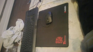 )Gaming keyboard, mouse and pad.Dirt cheap