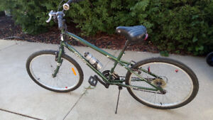 Everyday (that is the brand name) mountain bike for sale