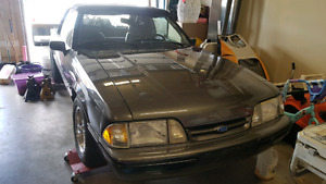 1990 mustang immaculate