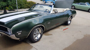 Oldsmobile 442   Great Selection of Classic, Retro, Drag and
