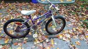 Girls bike  Kitchener / Waterloo Kitchener Area image 1