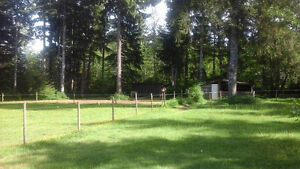 Large Acreage...NEW PRICE Campbell River Comox Valley Area image 4