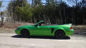 2003 Ford Mustang décapotable