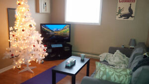 Mature Student Roommate in 3 bedroom apartment close to MUN