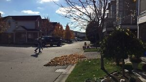 Fall / Leaf / Yard cleanup / Eavestrough Cleaning Kitchener / Waterloo Kitchener Area image 4