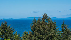 NEW PRICE - Stunning Ocean Views from Nanaimo Home