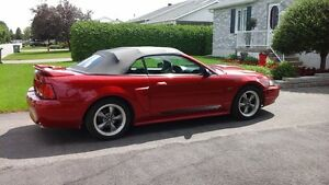 2000 Ford Mustang Cabriolet Pony GT