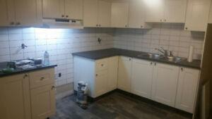 Basement 1 bedroom apartment for rent