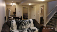 One Bedroom Furnished Basement Suite Avail Nov 1 in Timberlea