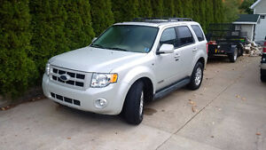 2008 Ford Escape Limited Edition|Leather|Moonroof