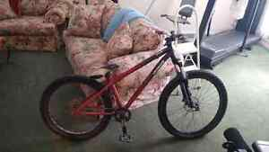 Specialized P2 Dirt Jumper 300 obo