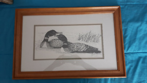 "Gallery framed, ""Tom Spatafore, Loons"" art"