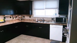 Room for rent cambrian college/new sudbury centre available now