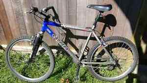Carrera Vertigo Mountain Bike
