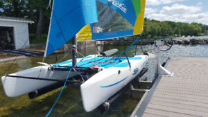 Hobie Wave or other small craft lift