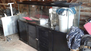 200 gallon fresh water fish take all equipment included