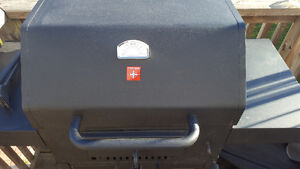 Mint Stove Coal BBQ Kitchener / Waterloo Kitchener Area image 3