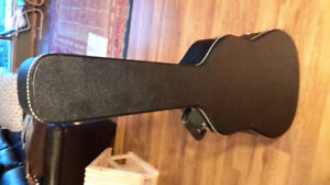 Hard case for accoustic guitar